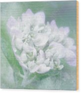 Dreaming Floral Wood Print