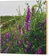 Dreaming Of Summer Wood Print