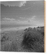Dreaming Of The Beach Wood Print