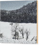 Dreams Of Snow  Wood Print