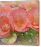 Dreamy Begonias Wood Print