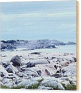 Dreamy Coastal Scene Wood Print