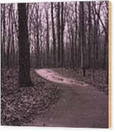 Dreamy Surreal Fantasy Woodlands Nature Path Wood Print by Kathy Fornal