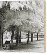 Dreamy Surreal Infrared Park Bench Landscape Wood Print