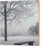 Dreamy White Blue Infrared Michigan Landscape Wood Print by Kathy Fornal