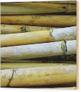 Dried Canes Wood Print