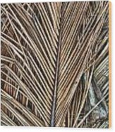 Dried Palm Fronds Wood Print