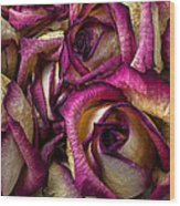 Dried Pink And White Roses Wood Print
