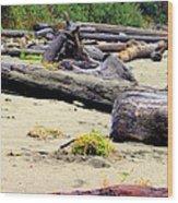 Drift Logs Wood Print