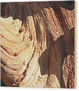 Driftwood 1 Wood Print