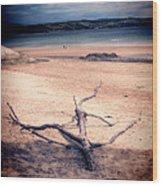 Driftwood 2 Lomo Wood Print