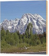 Driftwood And The Grand Tetons Wood Print