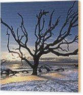 Driftwood Beach At Dawn Wood Print