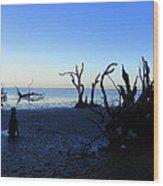 Driftwood Blues 2 Wood Print
