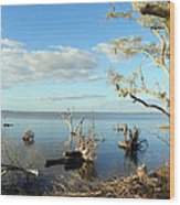 Driftwood Landscape 1 Wood Print