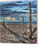 Driftwood V2 Wood Print