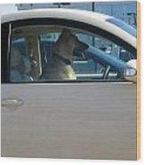 Driving Dog Wood Print