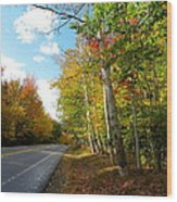 Driving Though The Birches Wood Print