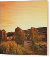 Drombeg Stone Circle, Near Glandore, Co Wood Print