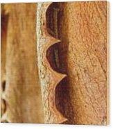 Dry Brown Aloe Vera Leaf Wood Print
