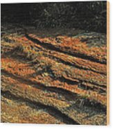 Dry River Country Wood Print