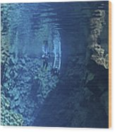 Dry Suit Divers Entering The Gin Clear Wood Print