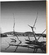 Dryden Lake New York Wood Print by Paul Ge