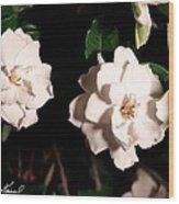 Dual Gardenias Wood Print