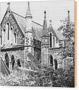 Dublin Church Wood Print