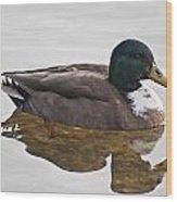 Duck 3 Wood Print