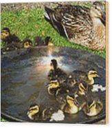 Duck Family Joy In Garden  Wood Print