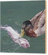 Duck Fishing Wood Print