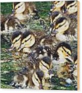 Duck-pile Wood Print