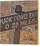 Duck Pond Trail Wood Print