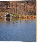 Ducks Flying Over Pond I Wood Print