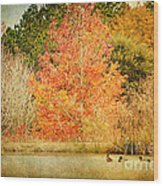 Ducks In An Autumn Pond Wood Print