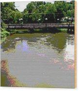 Ducktown Polarized River  Wood Print