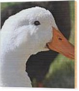 Duey The Duck Wood Print