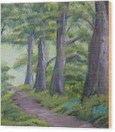 Duff House Path Wood Print