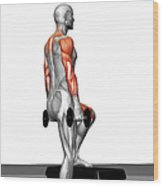 Dumbbell Step-up Exercise (part 2 Of 2) Wood Print