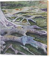 Dunbar Cave Roots  Wood Print by Patsy Sharpe