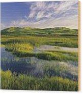 Dune Pond, Brackley, Prince Edward Wood Print