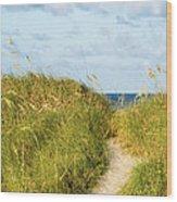 Dune Trail Wood Print