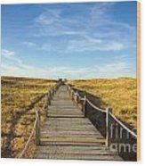 Dune Walkway Wood Print