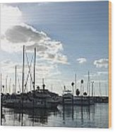 Dunedin Marina  Wood Print