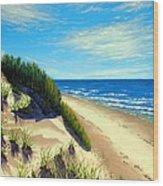 Dunes At Dalvay Wood Print