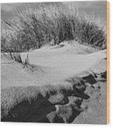 Dunes On A Staten Island Beach Wood Print