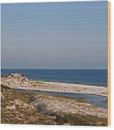 Dunes On The Beach Wood Print