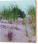 Dunes Wood Print by Susan Carella