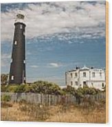 Dungeness View Wood Print